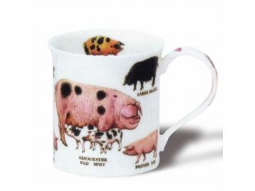 DUNOON  Old Farm Breeds Pigs Tasse Becher Porzellan Schwein