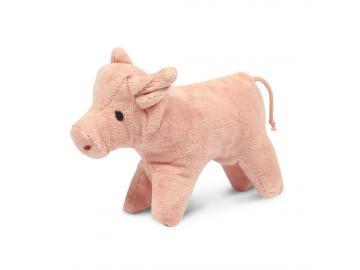 Tierkind Schwein Senger