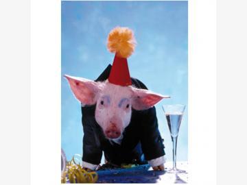 Klappkarte m. Umschlag. Prost Neujahr. Schwein