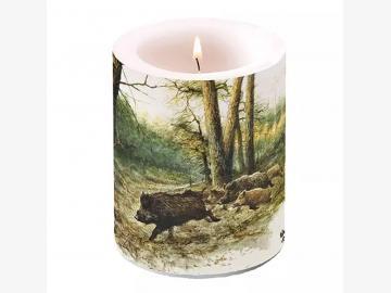 Dekorkerze Wild Boars In The Woods
