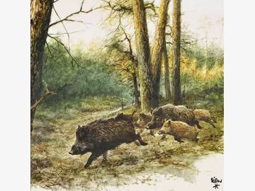 Servietten Wild Boars In The Woods 33x33cm