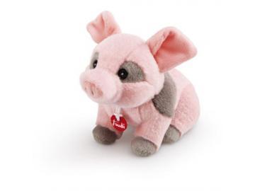 Trudino Schwein 2013 in Geschenkbox . 15 cm Plüsch Trudi