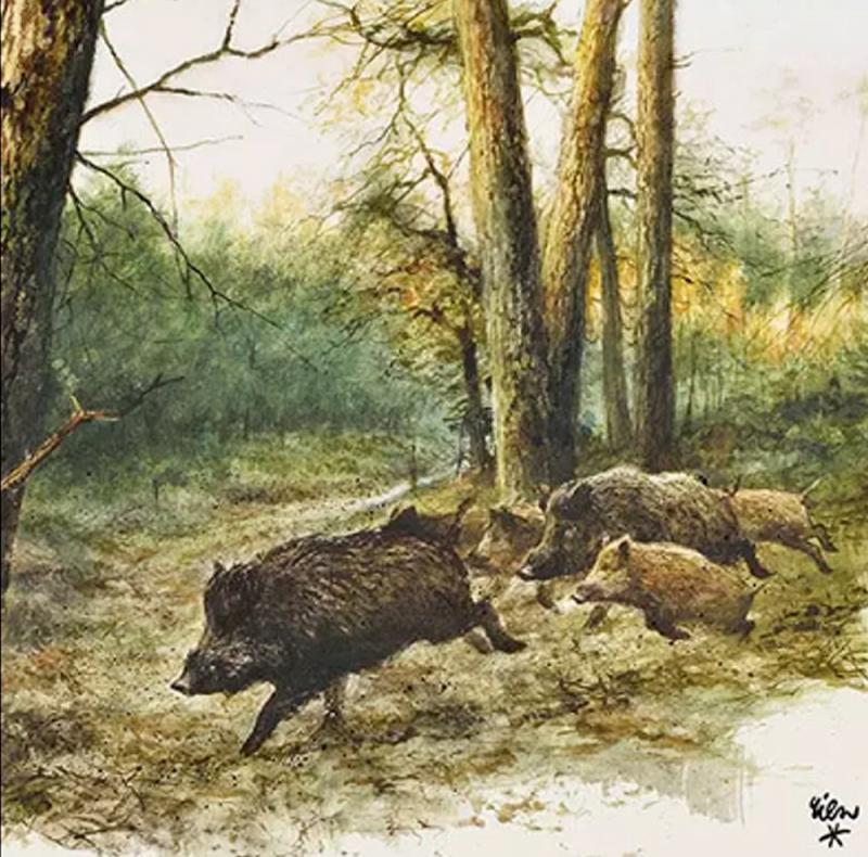 Set - Kerze u. Servietten Wild Boars In The Woods