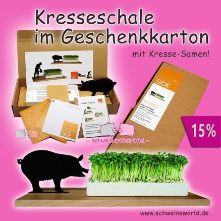 schwein schweinsworld Pig World wildschwein wild boar spar dosen money box piggy bank sparschwein